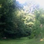 Veer left down the grassy hill.